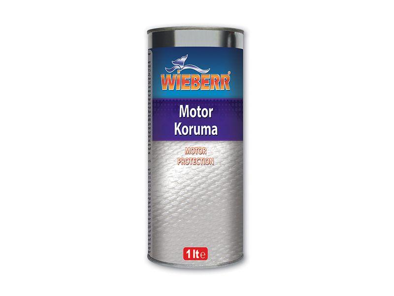 Motor Koruma